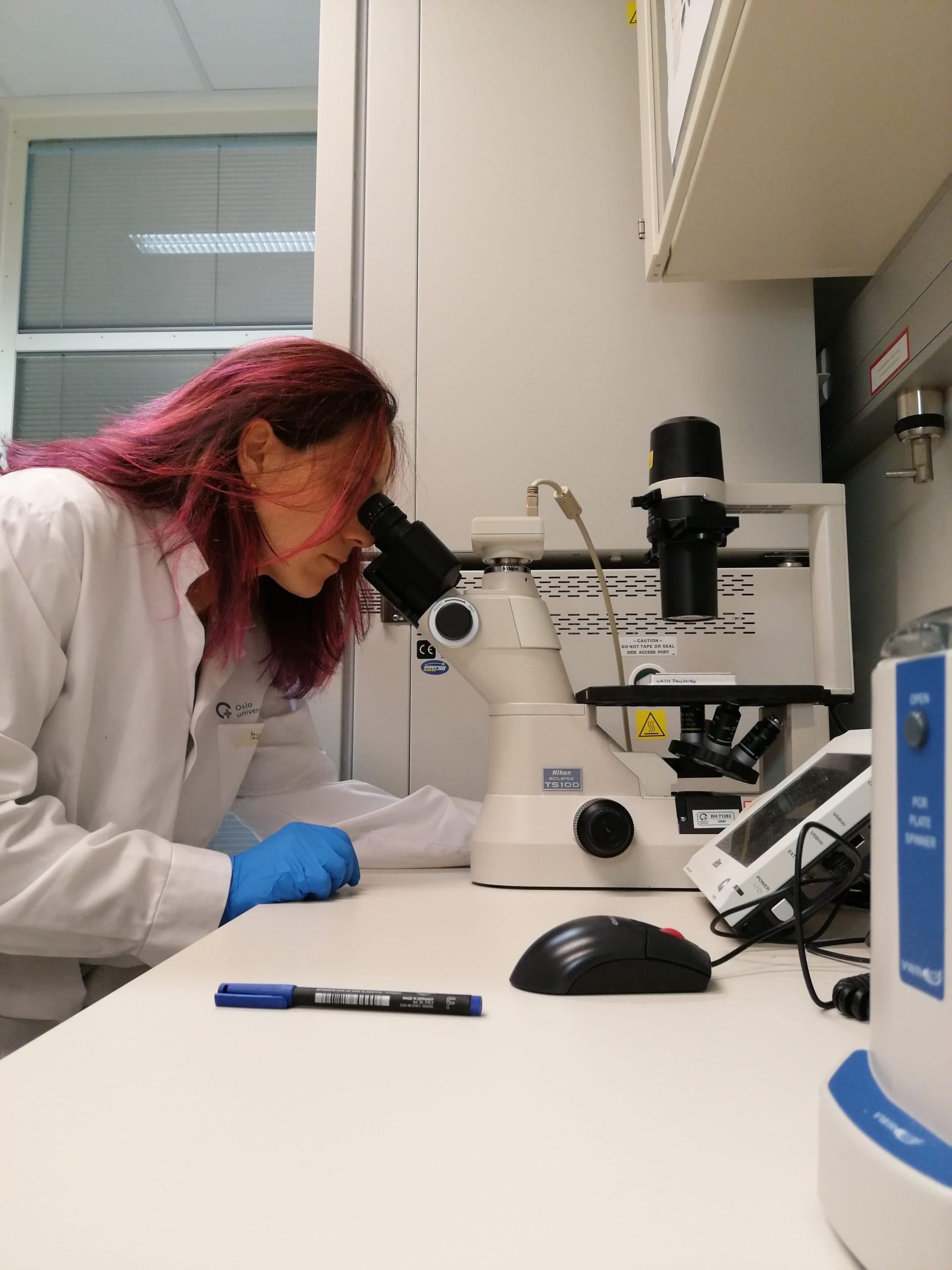 "Pilar Ayuda: ""How to combine anticancer drugs"""